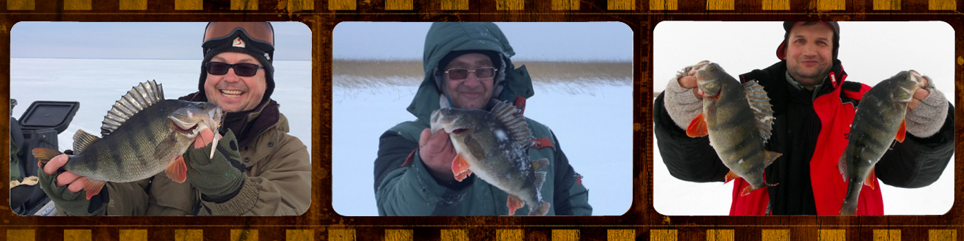 Maxfishing - форум настоящих рыбаков
