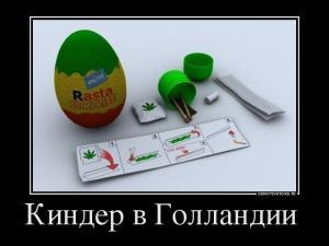 34903346_kinder-v-gollandii-.jpg